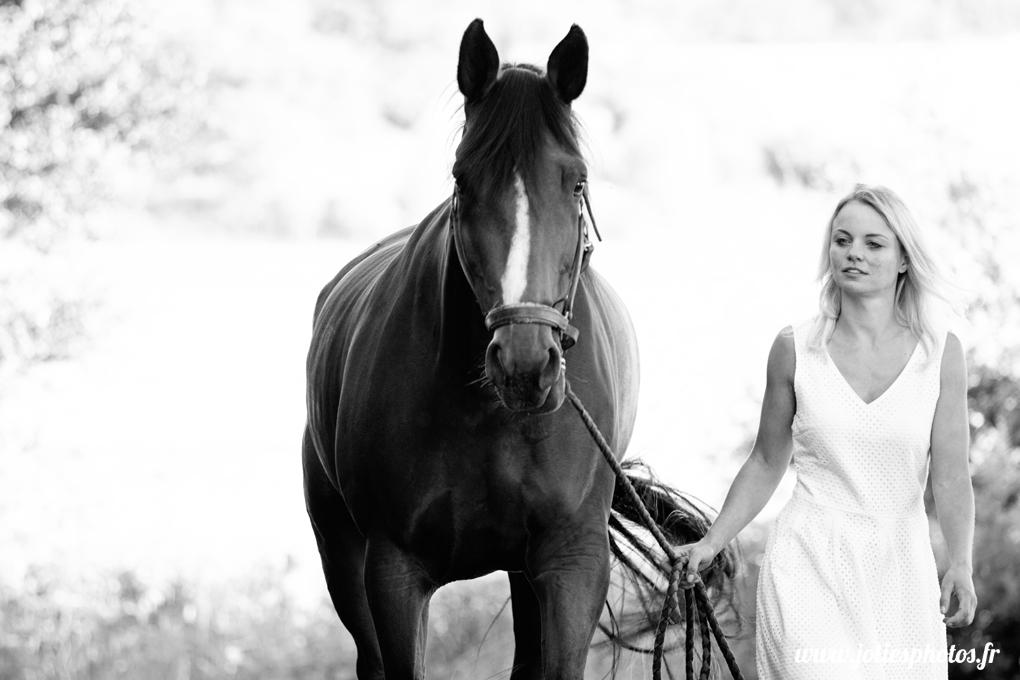 photographe_chevaux_animaux_nancy_luneville-19