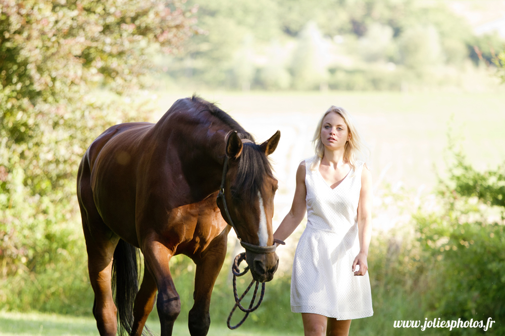 photographe_chevaux_animaux_nancy_luneville-23