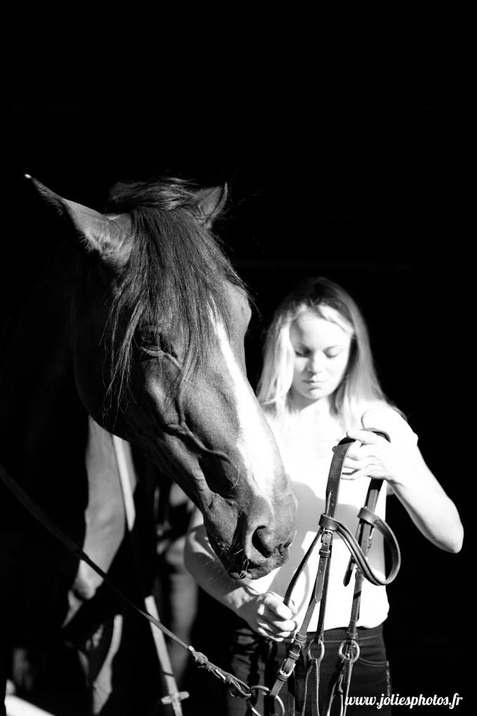 photographe_chevaux_animaux_nancy_luneville-32