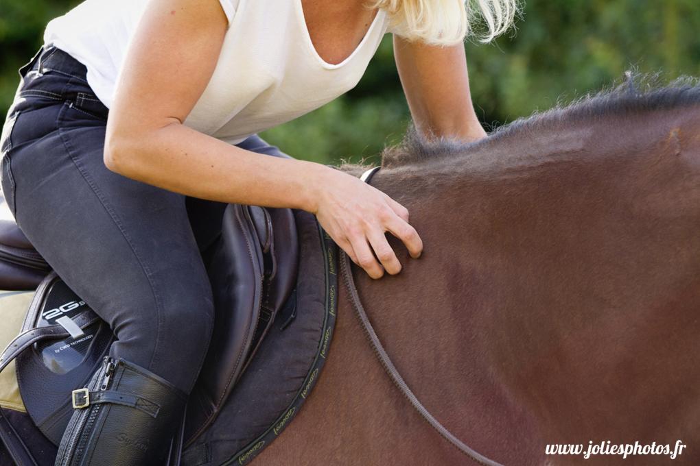photographe_chevaux_animaux_nancy_luneville-36